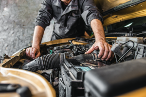 Changing out a gold car's oil to help it run better.